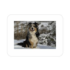 Australian Shepherd In Snow 2 Double Sided Flano Blanket (Mini)