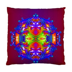 Abstract 6 Standard Cushion Case (one Side)