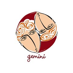 Gemini Star Sign Birthday Cake 3D Greeting Card (7x5)