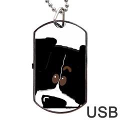 Bern Mt Dog Peeping Dog Dog Tag USB Flash (One Side)