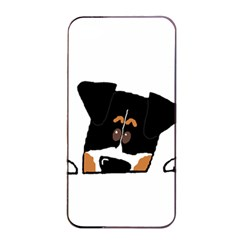 Peeping Bernese Mountain Dog Apple iPhone 4/4s Seamless Case (Black)