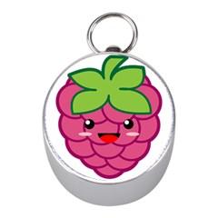Raspberry Mini Silver Compasses