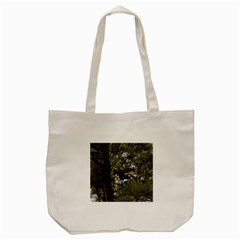 Bald Eagle Tote Bag (Cream)