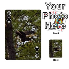 Bald Eagle Playing Cards 54 Designs