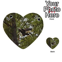 Bald Eagle Playing Cards 54 (Heart)