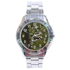 Bald Eagle Stainless Steel Men s Watch