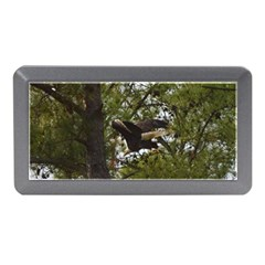 Bald Eagle Memory Card Reader (Mini)