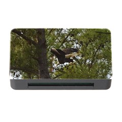 Bald Eagle Memory Card Reader with CF