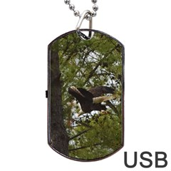 Bald Eagle Dog Tag USB Flash (Two Sides)