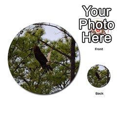 Bald Eagle 2 Multi Purpose Cards (round)