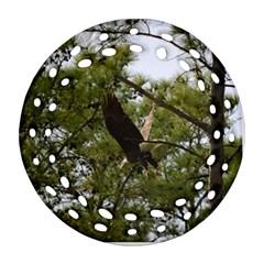 Bald Eagle 2 Ornament (Round Filigree)