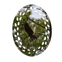 Bald Eagle 2 Ornament (oval Filigree)