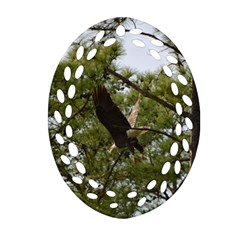 Bald Eagle 2 Oval Filigree Ornament (2-Side)