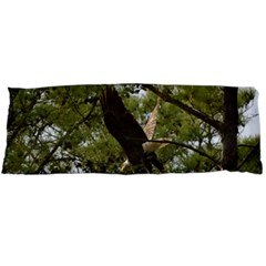 Bald Eagle 2 Body Pillow Cases (dakimakura)