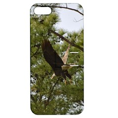 Bald Eagle 2 Apple iPhone 5 Hardshell Case with Stand