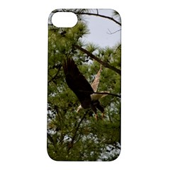Bald Eagle 2 Apple iPhone 5S Hardshell Case
