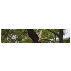 Bald Eagle 2 Flano Scarf (Small)