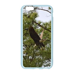 Bald Eagle 2 Apple Seamless iPhone 6 Case (Color)