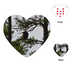 Bald Eagle 3 Playing Cards (Heart)