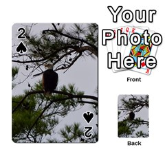 Bald Eagle 3 Playing Cards 54 Designs