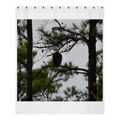 Bald Eagle 3 Shower Curtain 60  X 72  (medium)