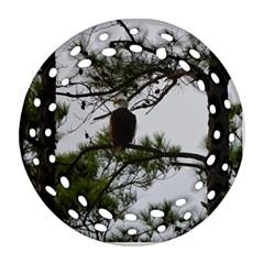 Bald Eagle 3 Ornament (Round Filigree)
