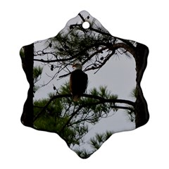 Bald Eagle 3 Snowflake Ornament (2-Side)