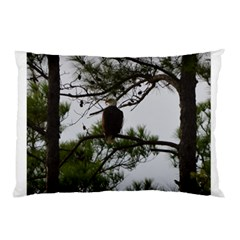 Bald Eagle 3 Pillow Cases (Two Sides)