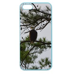 Bald Eagle 3 Apple Seamless iPhone 5 Case (Color)