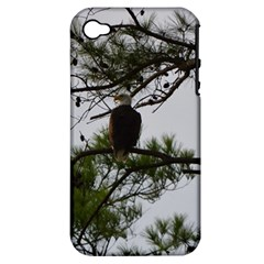 Bald Eagle 3 Apple iPhone 4/4S Hardshell Case (PC+Silicone)