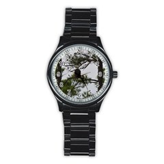 Bald Eagle 3 Stainless Steel Round Watches