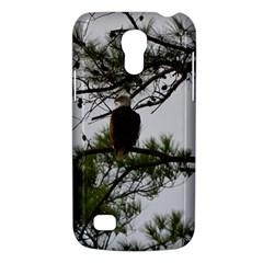 Bald Eagle 3 Galaxy S4 Mini