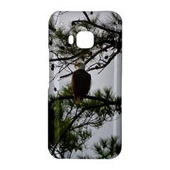 Bald Eagle 3 HTC One M9 Hardshell Case