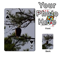 Bald Eagle 4 Playing Cards 54 Designs