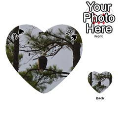 Bald Eagle 4 Playing Cards 54 (heart)