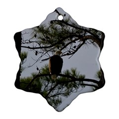 Bald Eagle 4 Snowflake Ornament (2-Side)