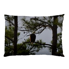 Bald Eagle 4 Pillow Cases (two Sides)