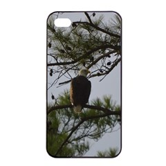 Bald Eagle 4 Apple iPhone 4/4s Seamless Case (Black)