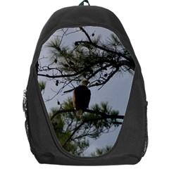 Bald Eagle 4 Backpack Bag