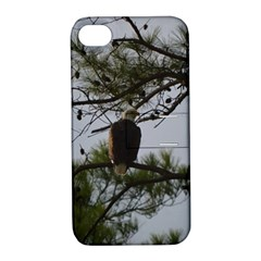 Bald Eagle 4 Apple iPhone 4/4S Hardshell Case with Stand