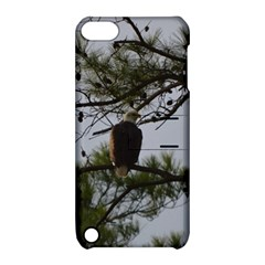 Bald Eagle 4 Apple iPod Touch 5 Hardshell Case with Stand