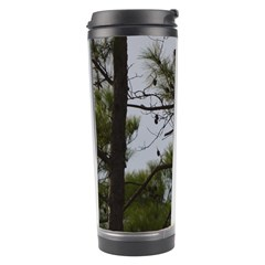 Bald Eagle 4 Travel Tumblers