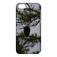Bald Eagle 4 Apple iPhone 5C Hardshell Case
