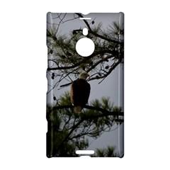 Bald Eagle 4 Nokia Lumia 1520
