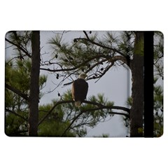 Bald Eagle 4 iPad Air Flip