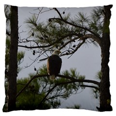 Bald Eagle 4 Large Flano Cushion Cases (Two Sides)