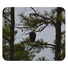 Bald Eagle 4 Double Sided Flano Blanket (small)