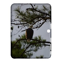 Bald Eagle 4 Samsung Galaxy Tab 4 (10.1 ) Hardshell Case