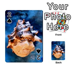 Sea Shell Spiral Playing Cards 54 Designs