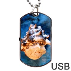 Sea Shell Spiral Dog Tag Usb Flash (one Side)